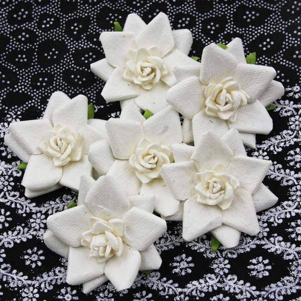 532031-alabasterflowers-abbeyb
