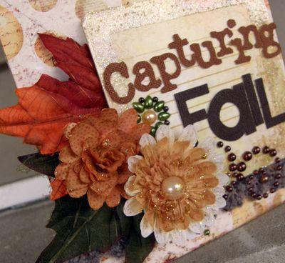 Capturing Fall Cu