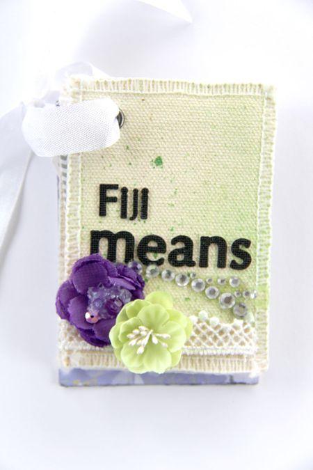 Fiji-mini-front-cover