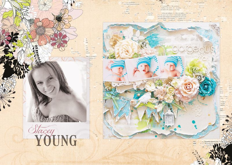 Stacey Young Collage1