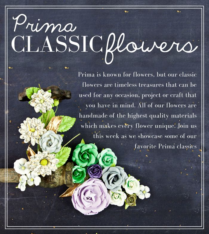 PrimaClassicFlowers
