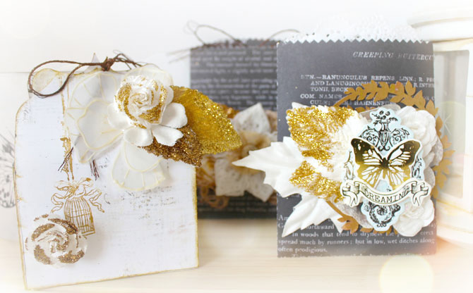 Ppp-shirel-prima_gift_pockets