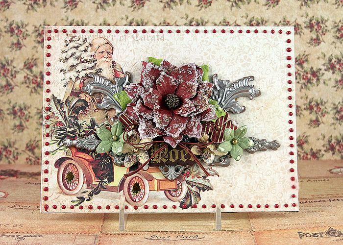 10 robin flowers
