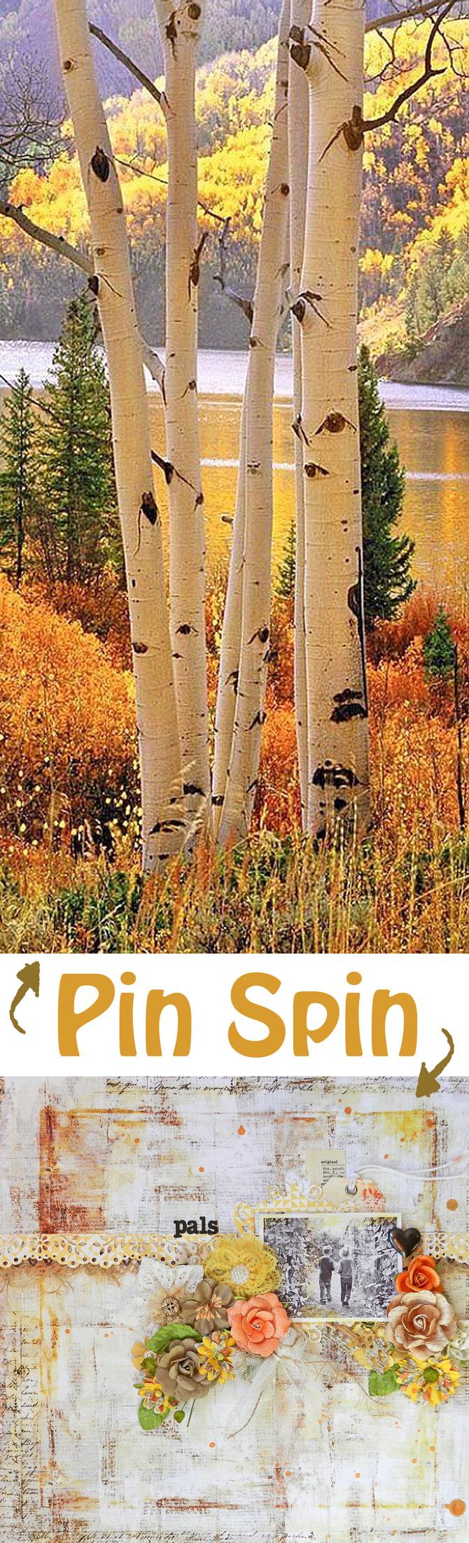 Oct-29-pinspin-erinweb