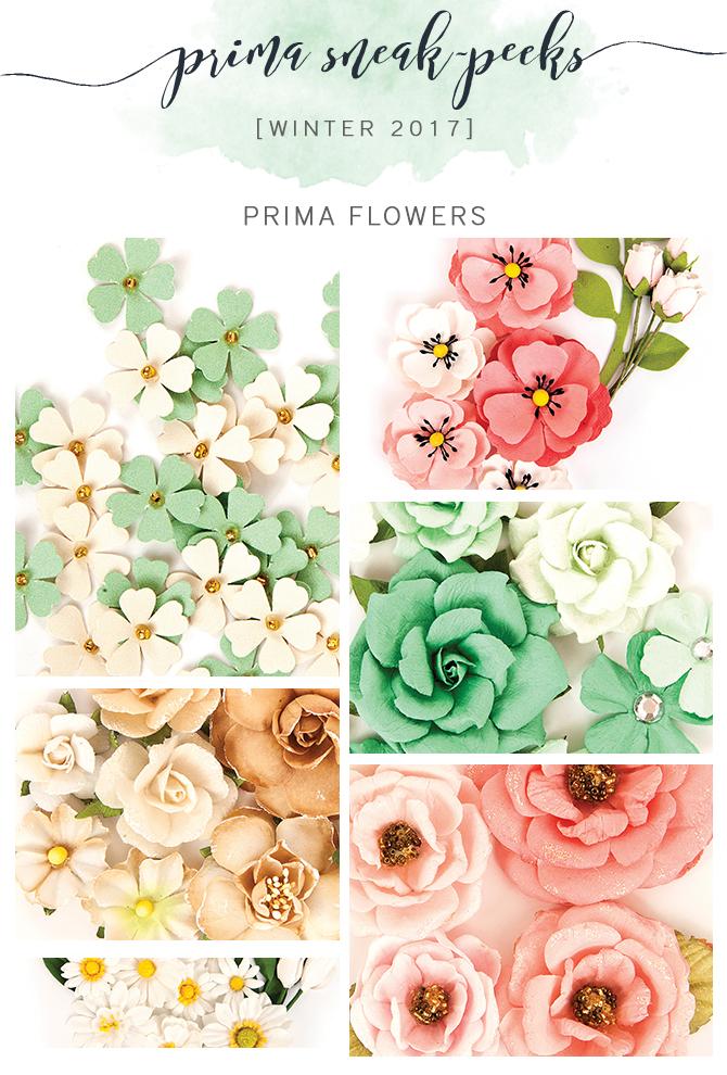 PrimaFlowers